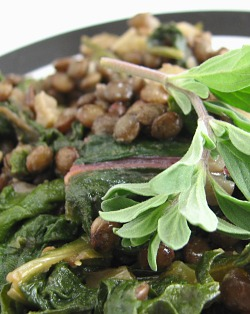 Lentils du Puy & chard with thyme sprig